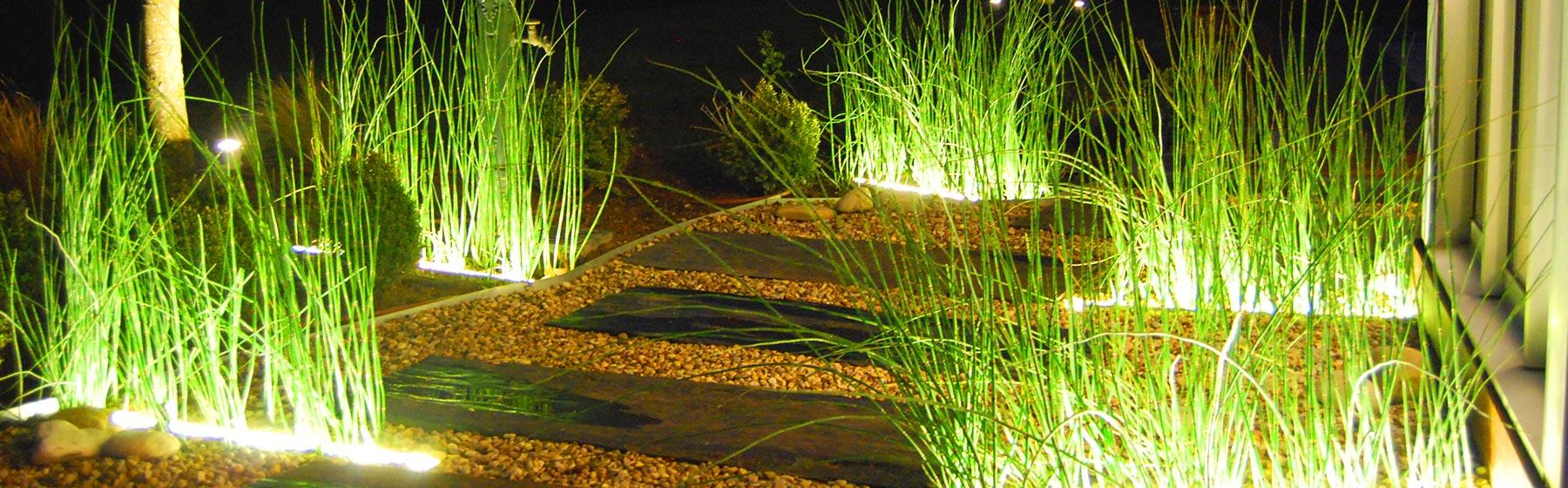 Une allée bordée de végétaux
