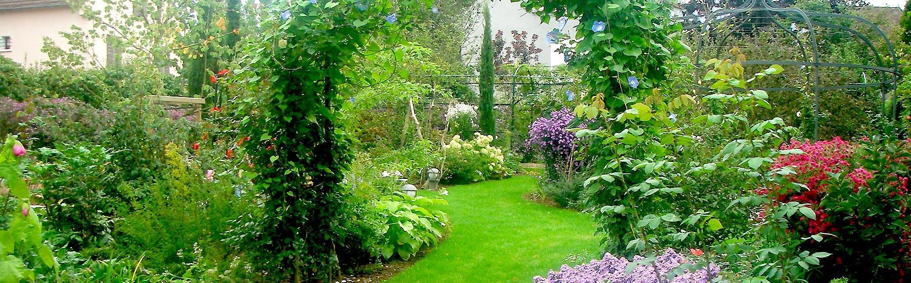 Jardin profusion de plantes